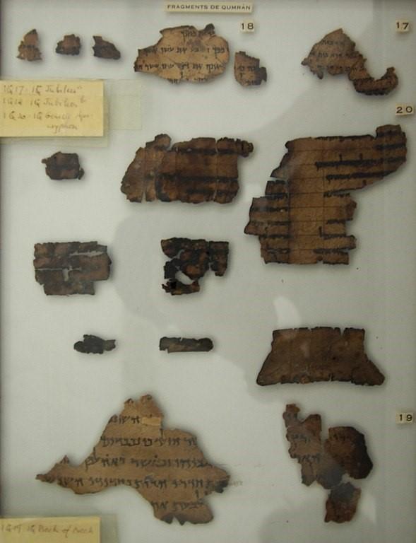 文書 と は 死海 死海文書とは何か?「恐怖の洞窟」で60年ぶりに紙片を発見【動画】